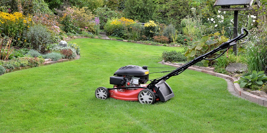 Clean cut lawn care home page for Lawn care and maintenance